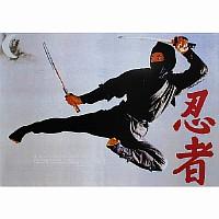 Poster Ninja Flugkick