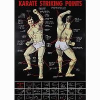 Poster Kampfsport Trefferpunkte